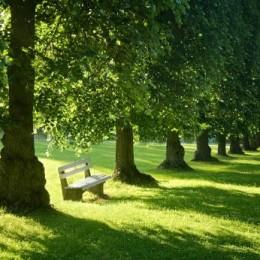 quiet_place1