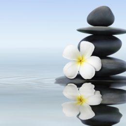 Prayerful Meditation Day